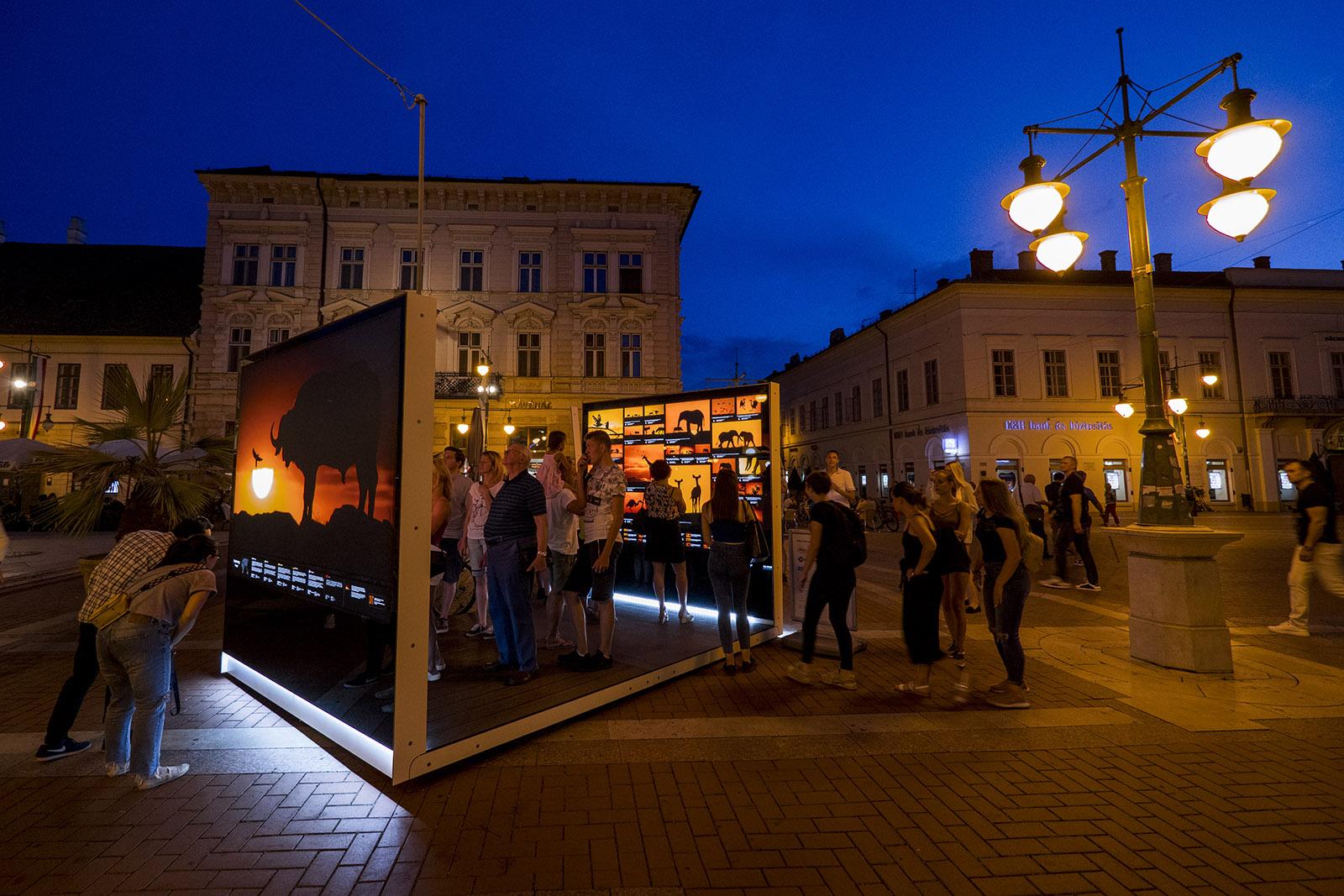 Máté Bence Természetfotó Kiállítás és Előadás Turné 2019